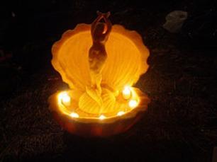 BIRTH OF VENUS, 2007